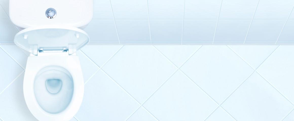 die toilette ist kein m llschlucker. Black Bedroom Furniture Sets. Home Design Ideas